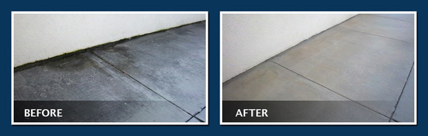 How Pressure Washing Can Help Remove Mold